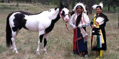 Chief Phillip Whiteman Jr. Brings Traditional Stories of the Horse to Idlewild Farm, May 20